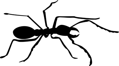ant-silhouette_small
